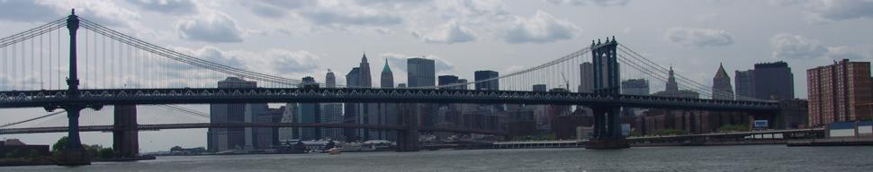 NYC Bridge by Luca Martignon